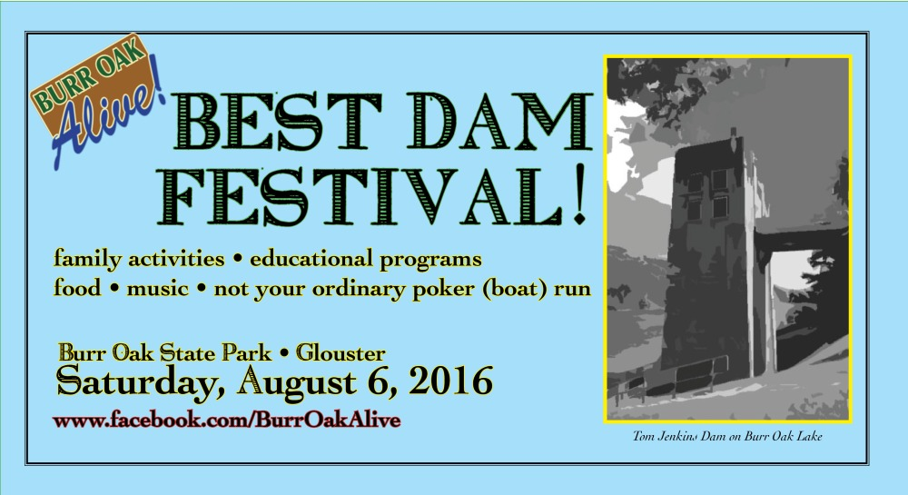 Best Dam Fest Logo Simple