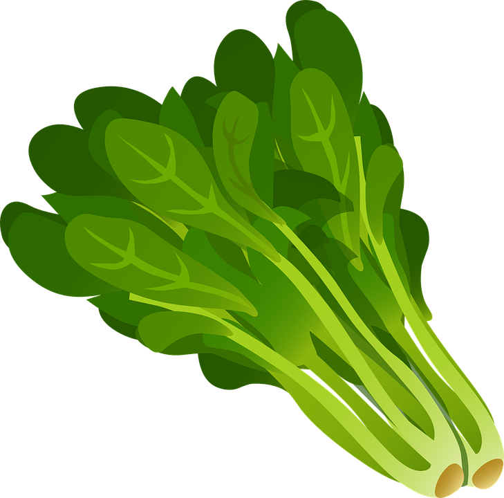 veggie graphic.png