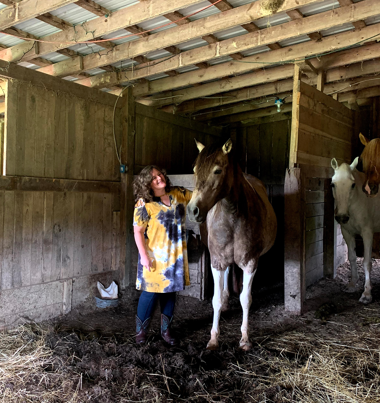 Ohio's Winding Road Stories: Journey With Horses